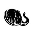 angry elephant icon vector image