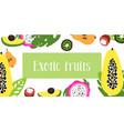 fruits of flat fruit raw vector image