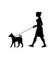 silhouette woman walking dog vector image