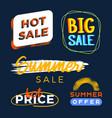 summer sale premium quality labels bundle modern vector image