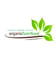 healthy organic farmfood leaves background vector image