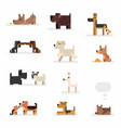 dog breeds flat set isolated on white vector image