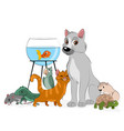 group of pets vector image