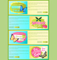 sale spring discount label online poster butterfly vector image vector image