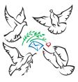 set of pigeons vector image