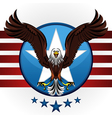 american bald eagle vector image