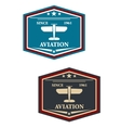 Aviation symbol or insignia with airplane vector image vector image