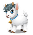 cute little goat isolated on a white background vector image vector image