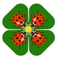 family dinner of ladybugs at the round table vector image vector image