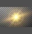 glowing lights effect on transparent background vector image