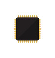 isolated microprocessor flat icon cpu vector image vector image
