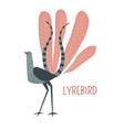 lyrebird cartoon bird from australia vector image vector image