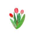 spring garden flower bouquet background vector image vector image