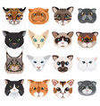 cats heads icons emoticons set vector image