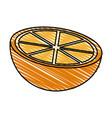 color crayon stripe side view slice orange fruit vector image vector image