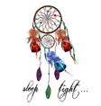 Dreamcatcher and Agate vector image vector image