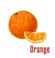Juicy tropical orange fruit icon for food design vector image