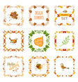 set of autumn leaves design elements vector image vector image