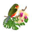 small tropical bird with tropical flowers vector image