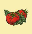 tomatoes woodcut vector image vector image