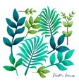 tropical leaves set elements on white vector image