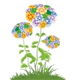 Colorful flowering plant vector image vector image