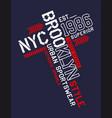 nyc brooklyn sport 0001 vector image vector image