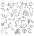 Fruits and berries sketched icons set vector image