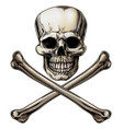 jolly roger skull and crossbones sign vector image