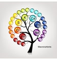 Vitamins tree concept for your design vector image