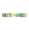 bees knees phrase overlap color no transparency vector image