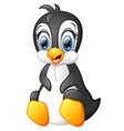 cartoon funny penguin sitting isolated on white ba vector image vector image