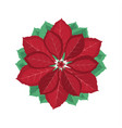 christmas poinsettia flower vector image