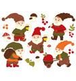 Gnomes Set vector image vector image