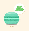 macaroon with mint taste vector image