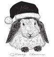 rabbit Santa Claus vector image