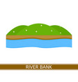 river bank vector image