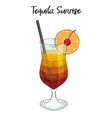 tequila sunrise cocktail with orange decorations vector image vector image