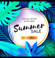 tropical summer sale banner palm leaves plants vector image