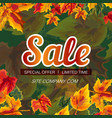 vivid banner with autumn sale promo vector image vector image