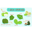 7 green foods you should be eating vector image vector image