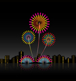 Bright festive fireworks vector image vector image