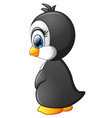 cute baby penguin posing isolated on white backgro vector image vector image