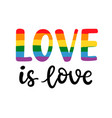 gay hand written lettering poster love is love vector image vector image