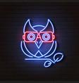 owl neon light glowing dark background vector image