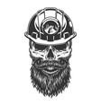 skull in miner helmet vector image vector image