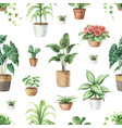 watercolor seamless pattern indoor green vector image vector image