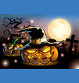 halloween pumpkins on night fullmoon vector image