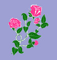 rose flower branch with buds vector image