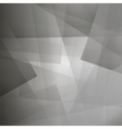 Abstract Grey Line Pattern vector image vector image
